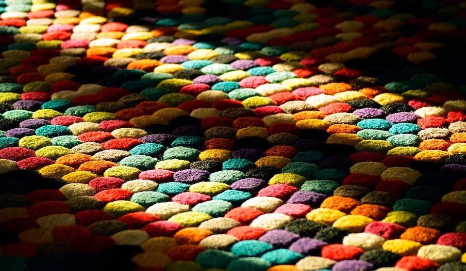 Los escarabajos de las alfombras: un enemigo invisible
